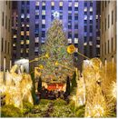 Book New York City Holiday Lights Tour Now!